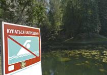 Утонул и пропал без вести: жители столицы стали жертвами купального сезона