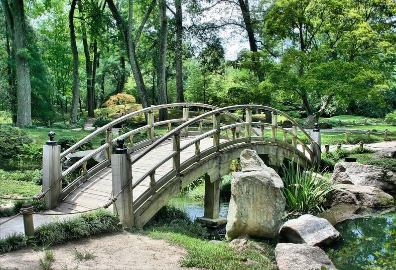 100 школьников будут работать всамарском батаническом саду