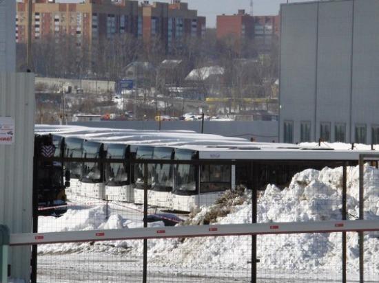 В Самару прибыли 50 новых автобусов «МАЗ»
